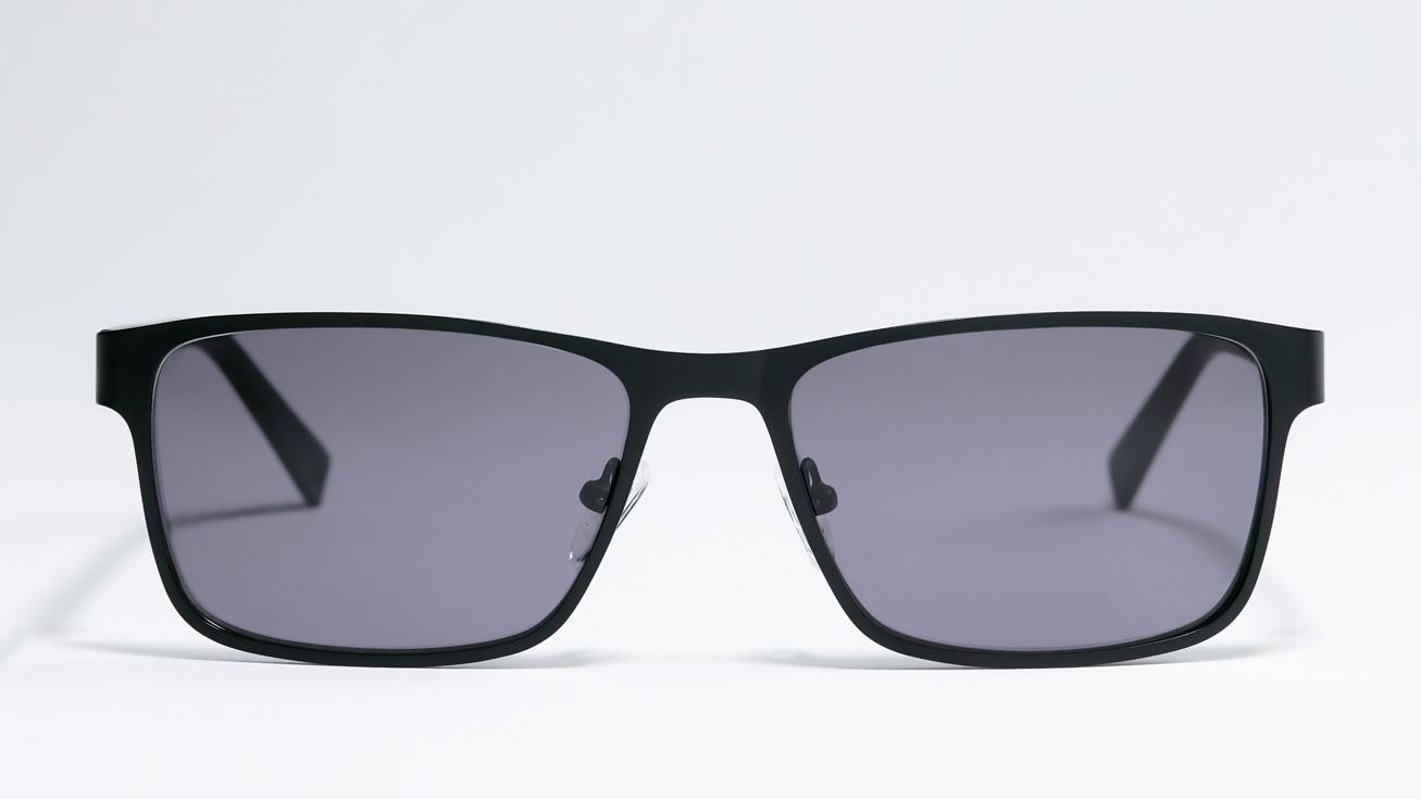 Солнцезащитные очки Очки с/з Trendy TDS0006 M.BLACK фото